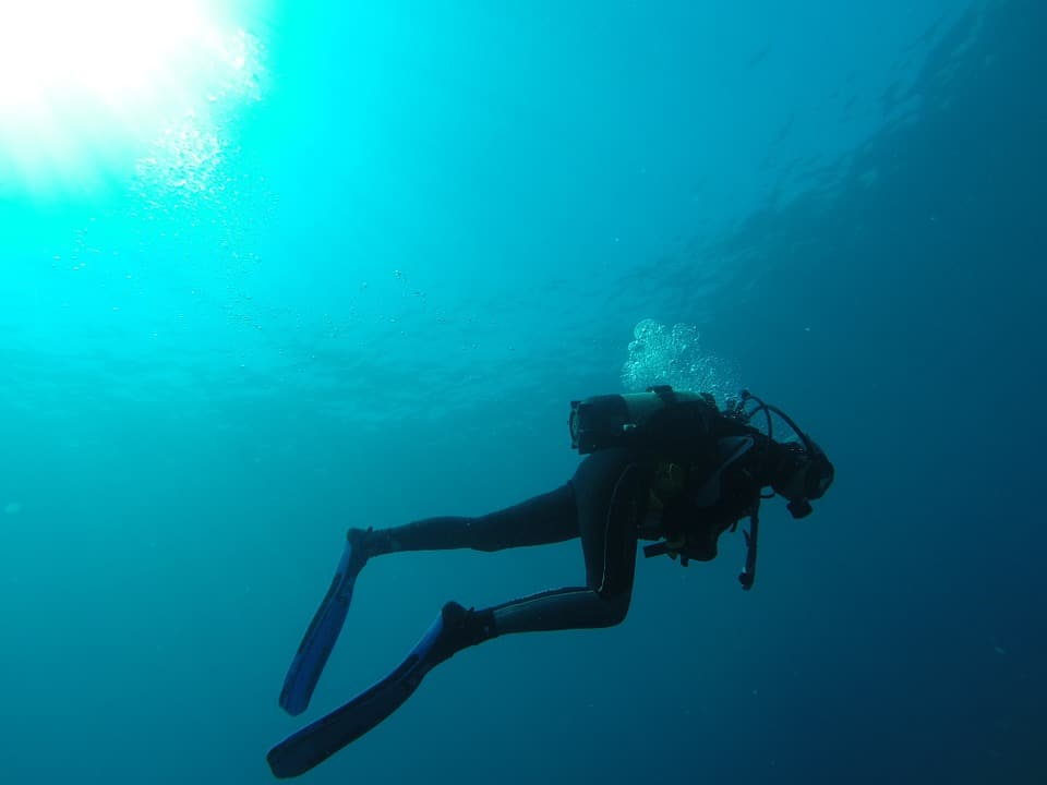 Scuba Divers Beginner's Guide Before You Try Scuba Diving