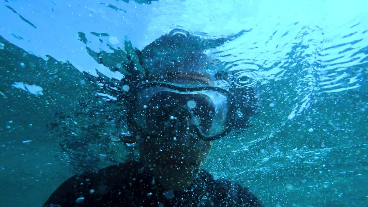 person wearing swimming goggles